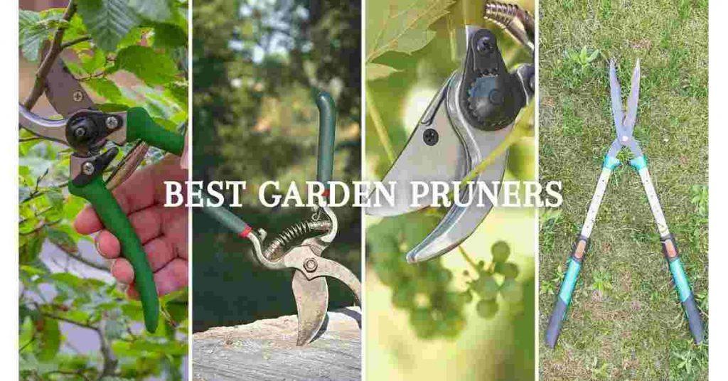 garden clipper